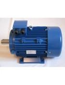 Trifazis elektros variklis 3KW-1430 APS